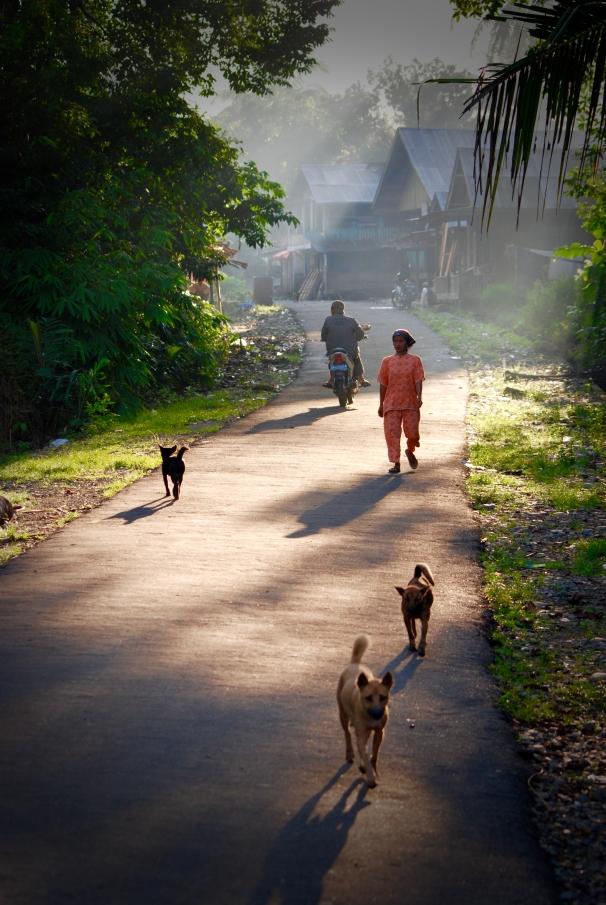 indonesia - 0169